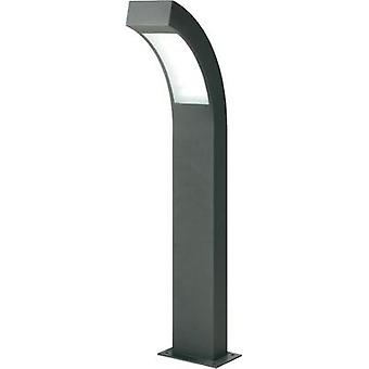 LED outdoor free standing light 4.5 W Cold white Esotec 105190 Anthracite