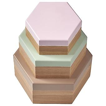 Anstrom Set of 3 Hexagonal Wood Boxes