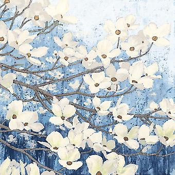 Dogwood Blossoms Ii Indigo Poster Print by James Wiens