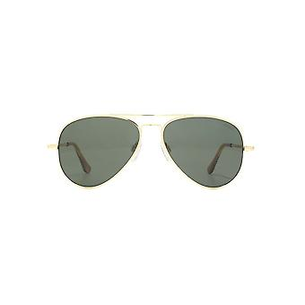 Randolph Engineering Concorde Sunglasses In 23K Gold AGX Green