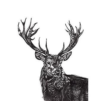 Stag print deer Lucy Francis small format