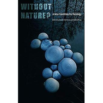 Without Nature?: A New Condition for Theology