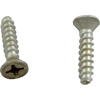 Hayward WGX1030Z1A Cover Screw without Metal Inserts - Set of 2