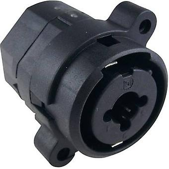 XLR connector Socket, vertical vertical Number of pins: 3 Black Cliff FC2440 1 pc(s)
