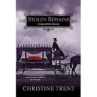Stolen Remains (Lady of Ashes Mysteries)