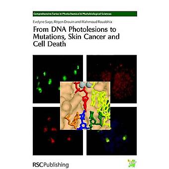 From DNA Photolesions to Mutations Skin Cancer and Cell Death by Bastien & Nathalie