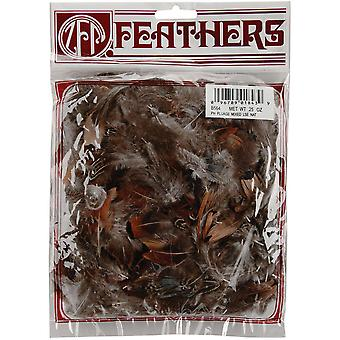 Pheasant Plumage Feathers .25 Ounce Natural B564 N