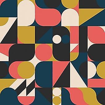Mistet bånd - vi troede, det var Okay på tidspunktet (2013-2015) [Vinyl] USA importerer