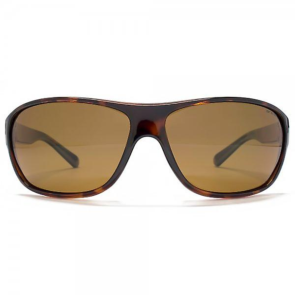 Animal Rodeo Plastic Wrap Sunglasses In Tortoiseshell