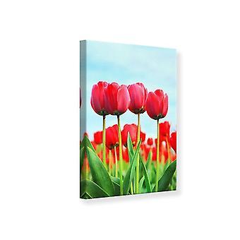 Leinwand drucken rote Tulpen