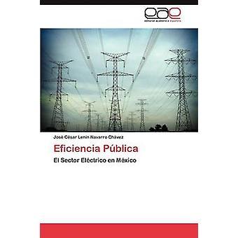 Eficiencia Pblica by Navarro Chvez Jos Csar Lenin
