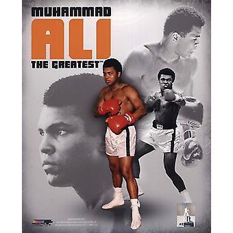 Muhammad Ali 2011 porträtt Plus sport foto (8 x 10)