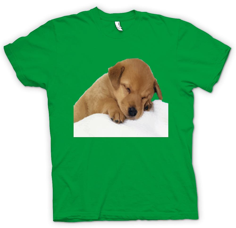 Mens T-shirt - Cute Sleeping Puppy Dog