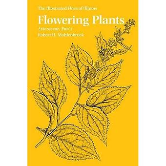 Flowering Plants: Asteraceae (The illustrated Flora of Illinois)