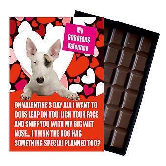 Bull Terriër cadeau voor Valentines Day presenteert voor hondenliefhebbers boxed chocolade