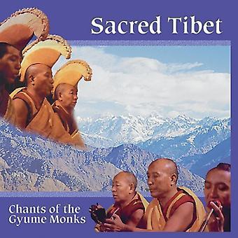 Gyume Monks - hellige Tibet [CD] USA import