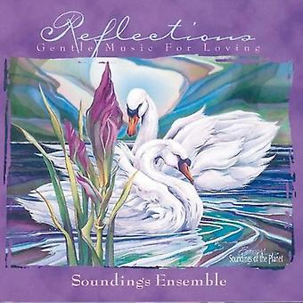 Spotdybder Ensemble - refleksioner-blid musik for L [CD] USA import