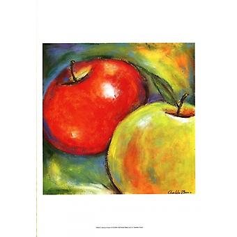 Abstract Fruits IV Poster Print by Chariklia Zarris (13 x 19)