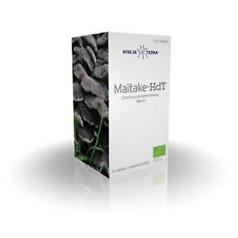 Hifas Da Terra Maitake 62Cap Hdt. (Vitamins & supplements , Fungis)