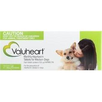 Valuheart Green (Medium Dogs)