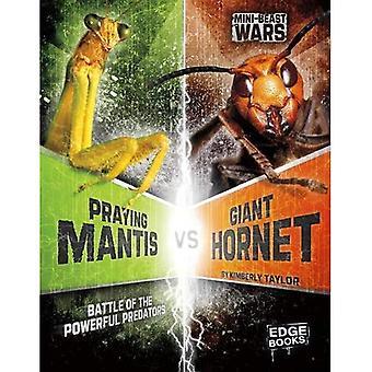Praying Mantis vs gigantiske Hornet: slaget kraftig Predators (mini dyret Wars)