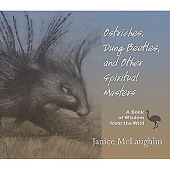 Strutsar, dynga skalbaggar och andra andliga mästare: en bok av visdom från vilt