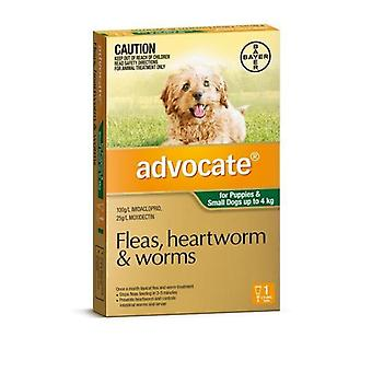 Advocate 1 Pack Small Dogs under 4kg