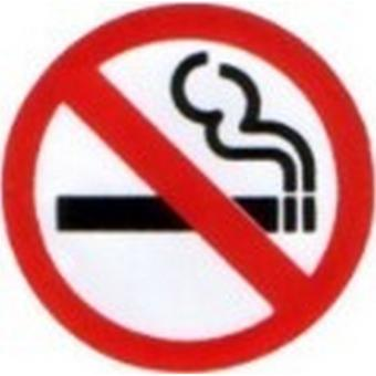 W4 No Smoking Sticker