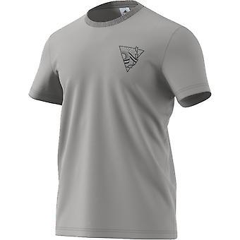 2018-2019 Argentina Adidas Graphic Tee (Grey)