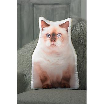 Adorable British Shorthair Cat Shaped Cushion