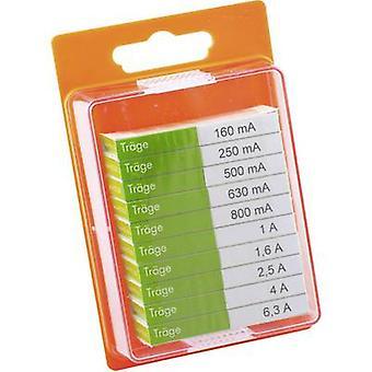 ESKA 12208 Micro fuse set (Ø x L) 5 mm x 20 mm Time delay -T- Content 100 pc(s)