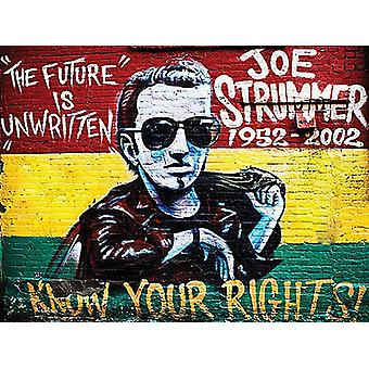 Joe Strummer, Know Your Rights, Small Metal Sign 200mm x 150mm (og)