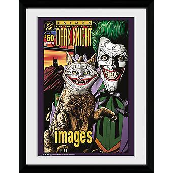Batman Joker komischen Katze gerahmt Collector Print 40x30cm