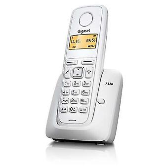Gigaset Cordless A120 White (Home , Electronics , Telephones , Telephones)