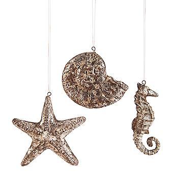 St. Augustine Starfish Shell Seahorse 4,5 tommer ferie ornamenter sæt af 3