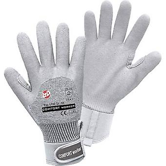 Cotton elastane Protective glove Size (gloves): 10, XL EN 388 CAT II L+D Griffy COMFORT WORKER 1180 1 pair