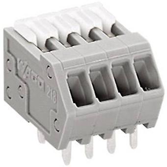 WAGO fjäderbelastade terminal 0.50 mm² antal stift 4 grå 1 dator