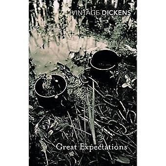 Great Expectations (Vintage Classics)