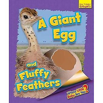 Whose Little Baby are You?: A Giant Egg and Fluffy Feathers