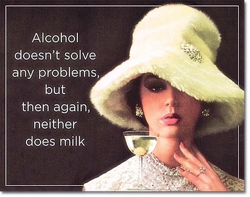 Alcohol Doesn't Solve Any Problems... funny metal sign    (de)