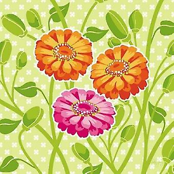 Zinnien II Poster Print von Patty Young