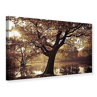 Canvas Print Landscape Park