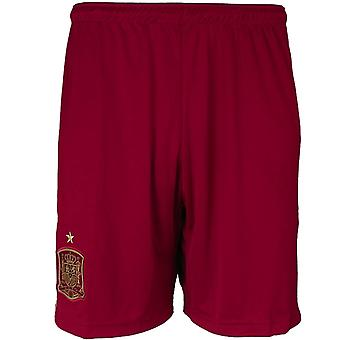 Adidas Spanien Herren Fußball Shorts G85233 football  men trousers