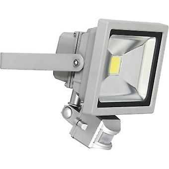LED outdoor floodlight (+ motion detector) 20 W Daylight white XQ lite