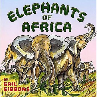 Elefanter i Afrika