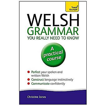 Welsh Grammar You Really Need to Know: Teach Yourself (Teach Yourself: Language)