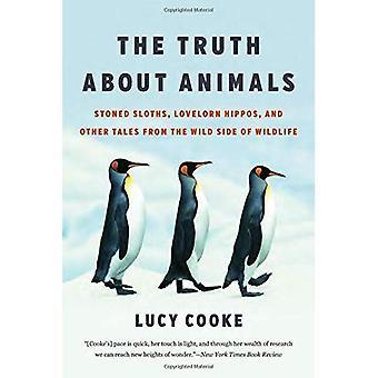 La verità sugli animali: bradipi Stoned, hippos Lovelorn e altri racconti dal lato selvaggio della fauna selvatica