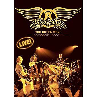 Aerosmith You Gotta Move Movie Poster (11 x 17)