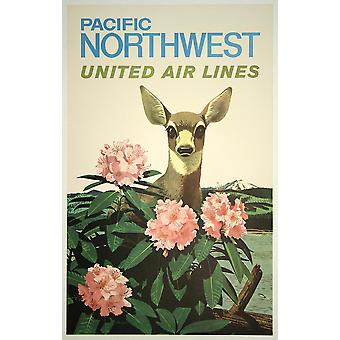 United Air Lines Pacific Northwest Poster Print Giclee