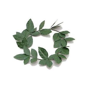 Diadema verde hoja de Laurel.
